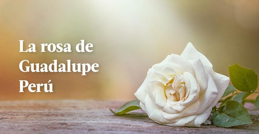 La Rosa de Guadalupe Perú 07-04-20 Capitulo 13